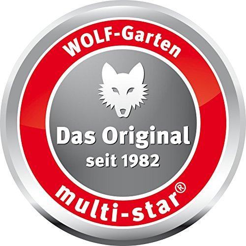 wolf garten multi star rasenkantenschneider rb m 3323000. Black Bedroom Furniture Sets. Home Design Ideas
